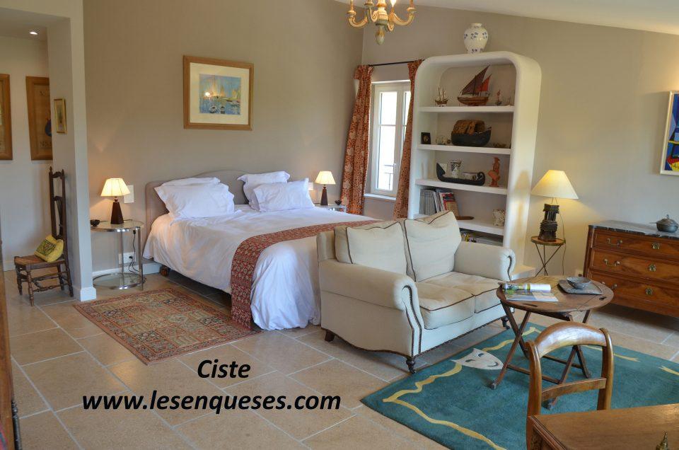 Chambre  Ciste, avec grand lit, bureau et canapé